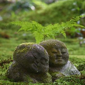 これが日本の「わびさび」なのか! 自国の現代化を誇りならがらも京都に心を奪われる中国人=中国