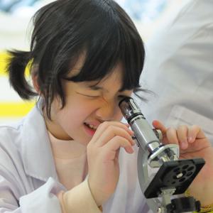 ノーベル賞受賞者を多数輩出する日本は「恐ろしく、そして敬意を抱かざるを得ない国」=中国報道