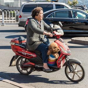 「中国で運転すること」は恐ろしい・・・車やバイクだけじゃない中国の「特殊な交通事情」=中国報道
