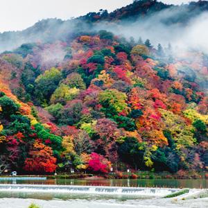 中国人旅行客「韓国へはもう行きたくない」が「日本にはまた行きたい」=中国報道