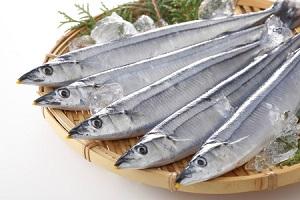 漁業資源の減少は中国のせいじゃない「日本人の食習慣を見直すべき」=中国メディア