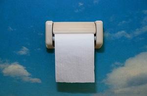 流すの?ゴミ箱に捨てるの?「日本では使用済みのトイレットペーパーをどうしたら正解?」=中国
