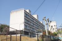 築64年の団地を大学生の手で復元、大阪府住宅供給公社