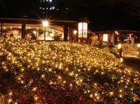 都内ホテル最大級のイルミネーション!約13万球が輝くホテルニューオータニのクリスマス