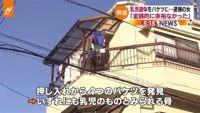大阪・乳児遺体遺棄、逮捕の女「金銭的余裕なかった」