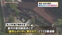 東京・あきる野市で園児ら23人がハチに刺される