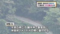 クマに襲われ70代女性けが、雑木林で散歩中 群馬・前橋