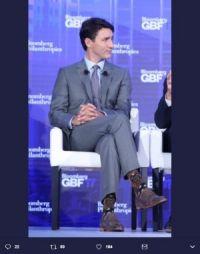 カナダのイケメン首相 なんと「チューバッカ」靴下で登場