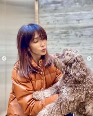 工藤 静香 愛犬
