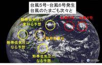 台風5号に6号も 台風のたまごも次々