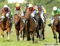 ドゥラメンテ「電撃引退」の損失と種牡馬入り後の課題