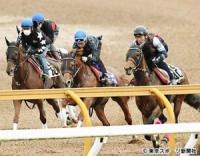 【日本ダービー】ベストアプローチ 抜群の動きで5馬身先着に岩田「枠順とか次第」