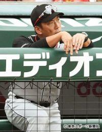 今季初4連敗の金本阪神に大下剛史氏が猛ゲキ