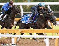 【菊花賞】サトノアーサー 半馬身先着に川田「具合はすごくいい」