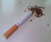 たばこの味の違いは何の違いなのか?