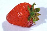 イチゴのおいしい食べ方って知ってる?