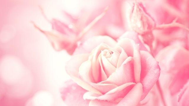 歴史を築いた女性【大山捨松の心に響く名言】生涯やおすすめの本 ...