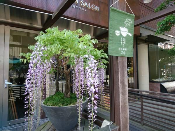 【京都】お庭を見ながら味わう「IEMON」和モーニング@伊右衛門サロン京都外観