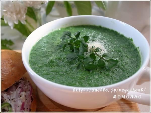すぐできる♪超簡単ほうれんそうポタージュスープ☆分離しない豆乳スープby:MOMONAOさん