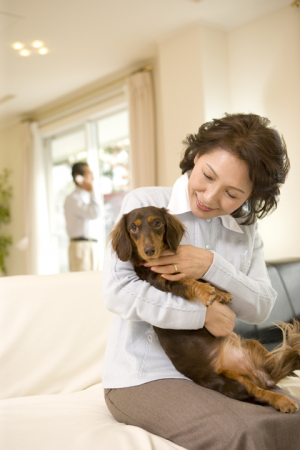 介助犬が自閉症の子どもの歯科治療をサポート!南米チリでの進んだ取り組みを紹介の画像