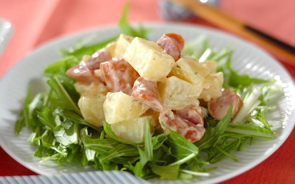 タルタルソースでいただく、ゴロゴロ「ジャガイモのサラダ」