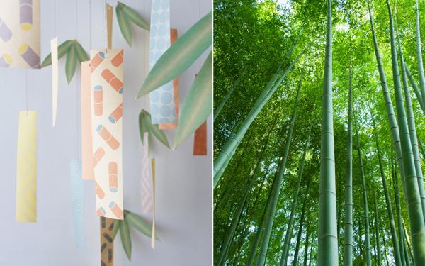 日本の竹でつくられた「竹紙」の七夕短冊が、子どもたちの未来をつくる?!