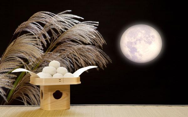 今日は十五夜! 美しさにうっとりするお月さまの絵本5選