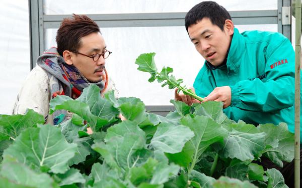 生産者の畑を訪れて野菜を調達