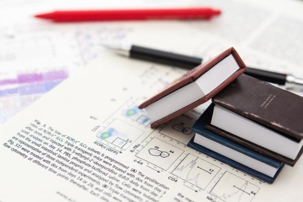 返済の必要のない給付型奨学金、貰うにはどうすればいい?