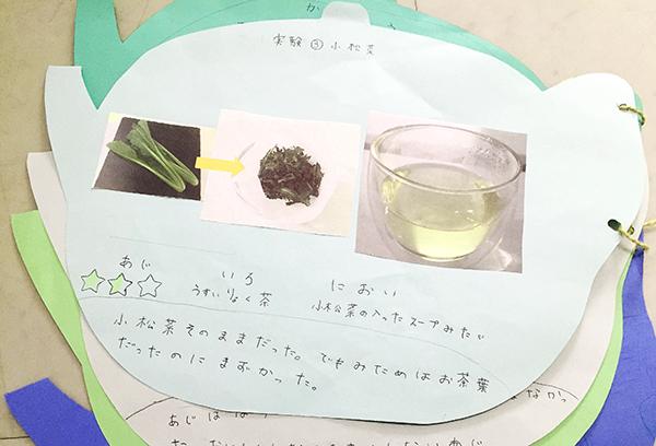 わが家の自由研究「お茶の実験」