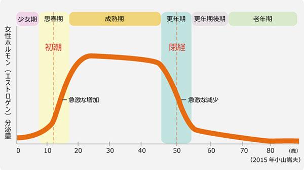 エストロゲン量を表すグラフ