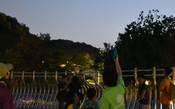 暗闇に光る目にギャー⁉ 親子で夜学びのススメ 動物園&水族館4選