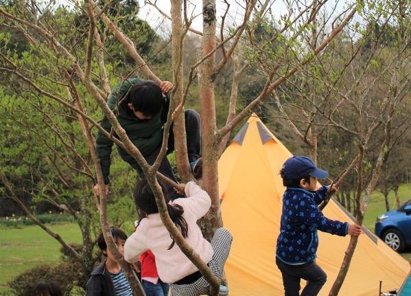 子連れキャンプ、メリット、デメリット、体験談