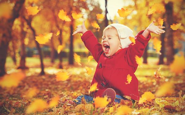 目で見て、耳で聞いて、食べてにっこり。秋のおとずれを感じられる絵本