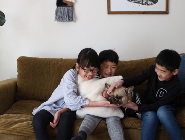【いぬねこ うちのこ。】フレンチブルドッグのいち(1歳)となかよし3姉弟/しょこさん