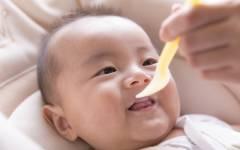 離乳食の栄養「ちゃんと足りてるか不安…」いつから、なにを、どれくらい?【ママ管理栄養士が解決「離乳食のお悩みあるある」 第3回】