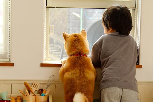 子どもとペットを災害から守るために親ができること【ペット防災の第一人者・平井潤子さんインタビュー】
