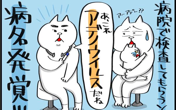 夏風邪のひとつプール熱(アデノウイルス)の恐ろしさを体験してしまった…!