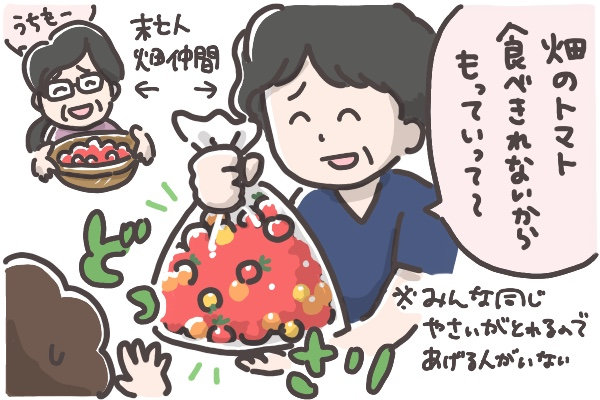 母の家庭菜園から大量のトマトをもらった