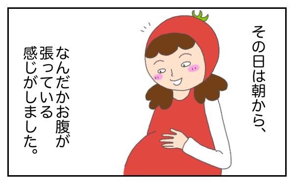 想像外のできごとが連発!? 初産での高齢出産~トマトの出産vol.1~