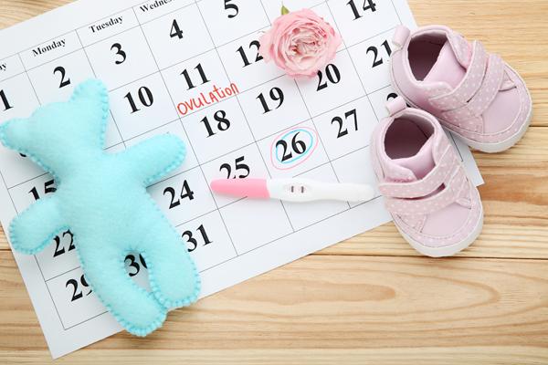 【医師監修】排卵日は生理から何日目? 出血と妊娠は関係してる?