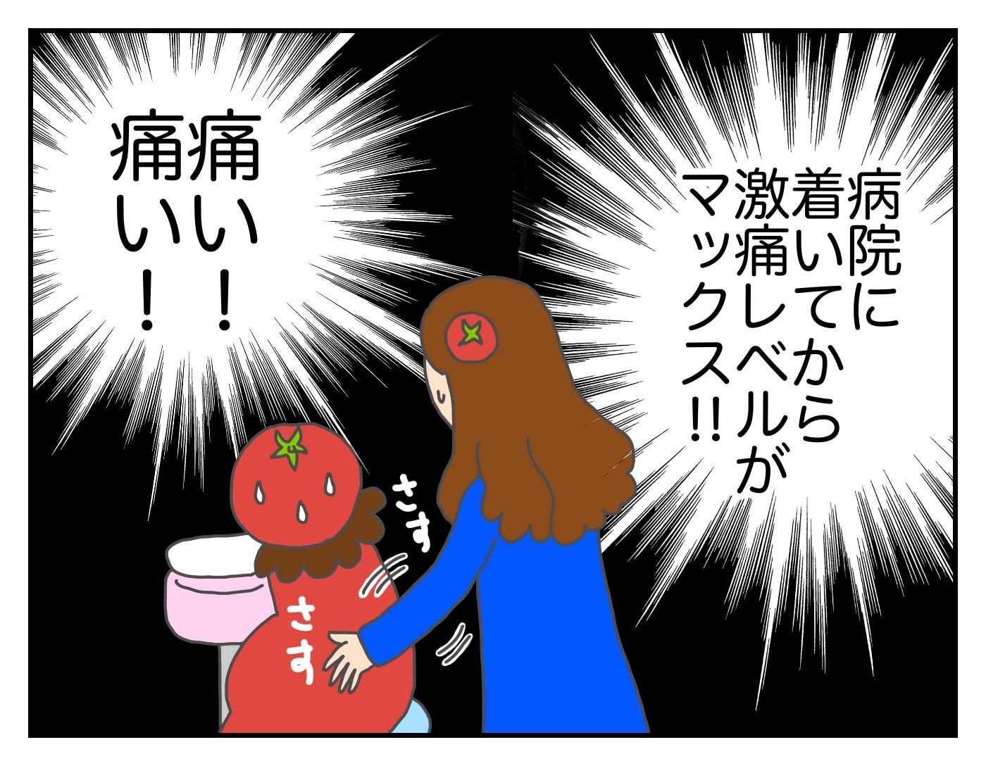 想像外のできごとが連発!? 初産での高齢出産~トマトの出産vol.5~