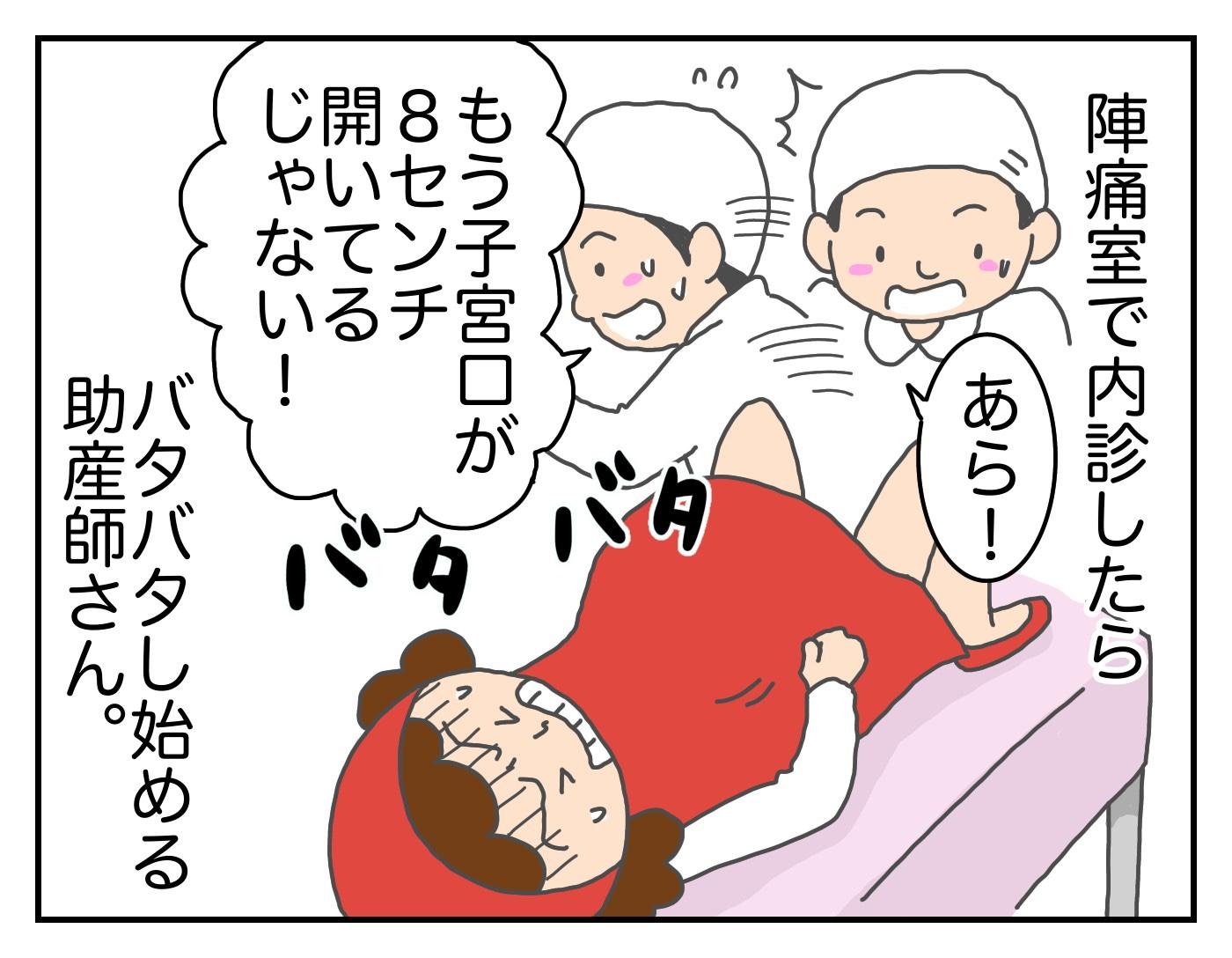 想像外のできごとが連発!? 初産での高齢出産~トマトの出産vol.6~