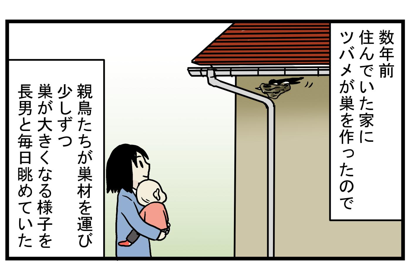 心待ちにしていたヒナの誕生…! 毎年、この時期になると思い出す「ツバメの巣」の話