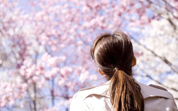 桜を見上げるトレンチコートを着た女性