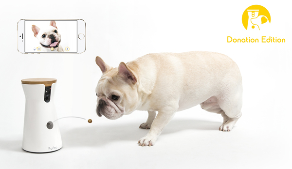 愛犬を見守ることで、保護犬支援プロジェクトに貢献できる「Furbo」の取り組みとは?
