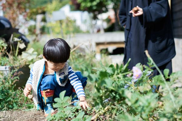 ブルーベリーやじゃがいもも収穫できる庭は、子どもにとって十分楽しめる場所
