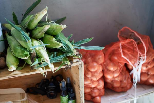 玄関に積まれた、大量のトウモロコシと玉ねぎ。トウモロコシは生で食べてもおいしいくらい新鮮