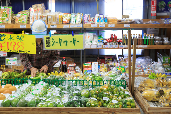 冬こそ沖縄・子連れ旅へ のどかな南の町「八重瀬」を2歳の息子とめぐってみた!