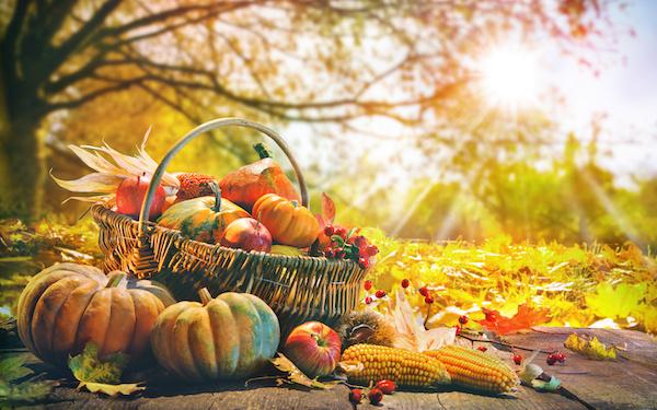 10月22日~10月28日の週間運勢占いランキング! 1位の星座は…?